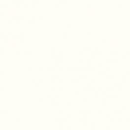 Passepartout 40x50cm Extra White